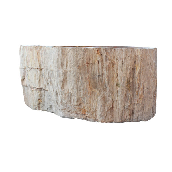 Skamieniale drewno umywalka kamienna 1